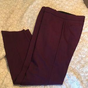LOFT Black Cherry color dress pants